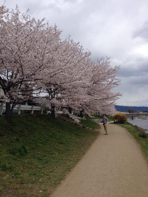 写真 2014-04-05 13 25 31