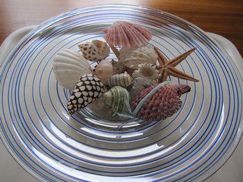 IMG_8422花器と貝殻350