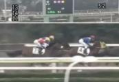 20140227 大井12R グランディオーソ 03