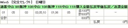 20140323 WIN5(1)