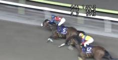 20140708 大井11R 準重賞 グランディオーソ 13