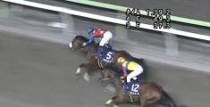 20140708 大井11R 準重賞 グランディオーソ 14