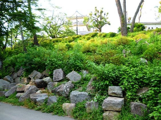 関東大震災で崩れた石垣1