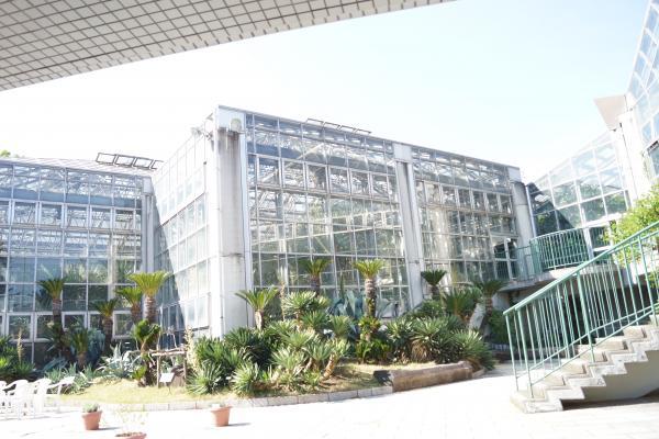 植物園+(7)_convert_20140511211857