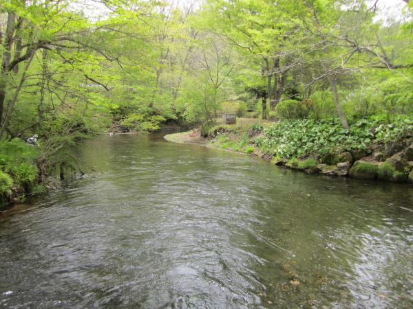 忍野村 (6)