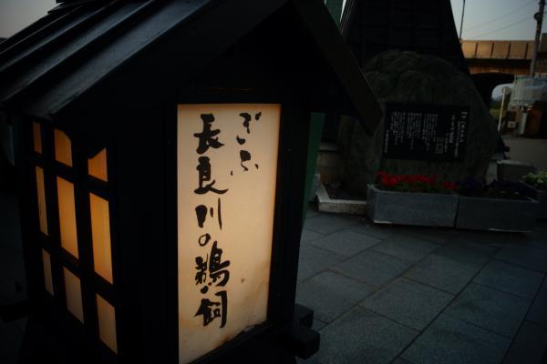 長良川鵜飼 (7)