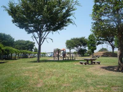 公園ランチ