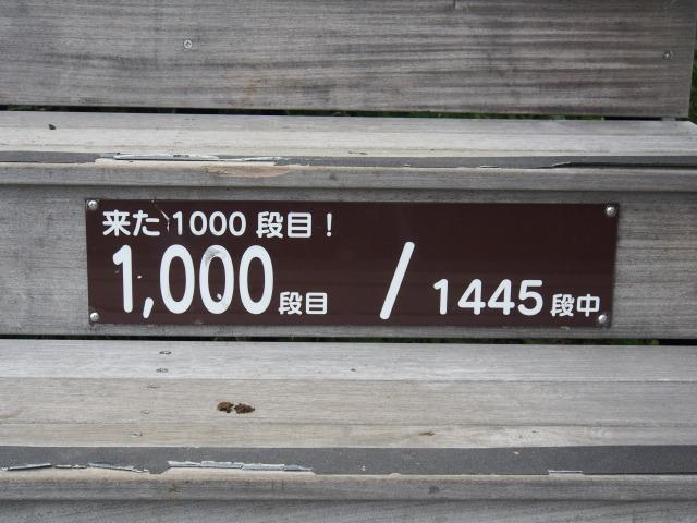 140706-103.jpg