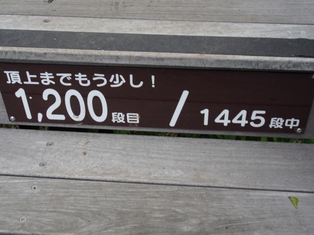 140706-108.jpg