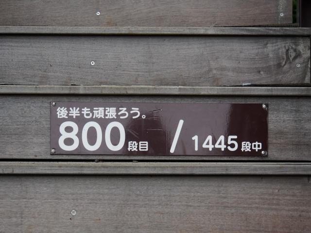 140706-83.jpg