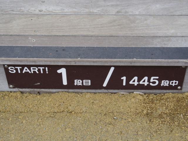 140706-9.jpg