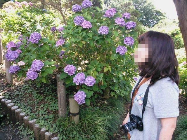 NCM_0132a.jpg