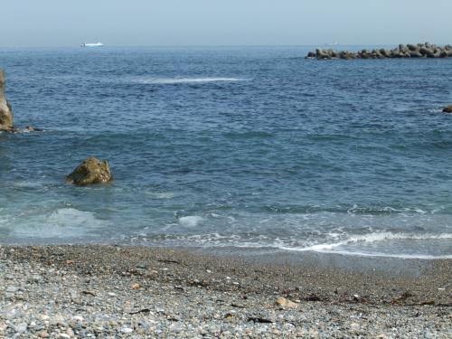 水も綺麗DSCF4554