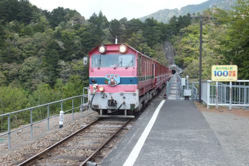 トロッコ列車SCF8662_convert_20140505140319