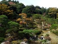 絵に描いたような能仁寺庭園