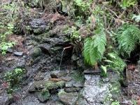 秘水 岩谷洞 岩清水