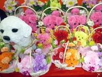 花に彩られたひな人形