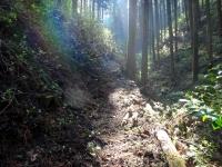 岩谷洞への参道
