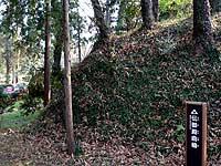鉢形城跡と寄居北條まつり #3