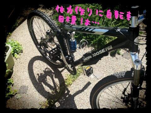 マウンテンバイク1