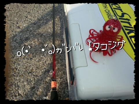 20140712085727696.jpg