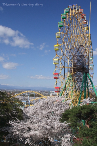 伊勢崎市 華蔵寺公園