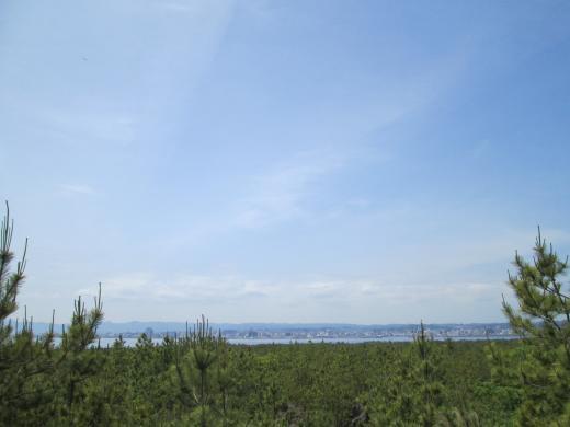 桜島の旅④