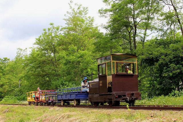 ④トロッコ列車