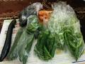 畑で採れた野菜が新鮮でおいしいですね!