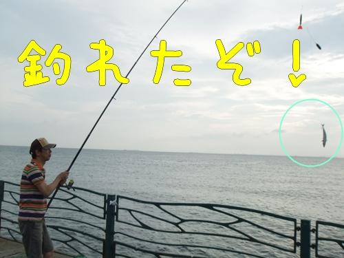 DSCF0985ー1