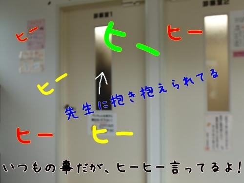 DSCF0929.jpg