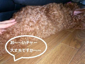 縺昴・縺√・・胆convert_20140603100652