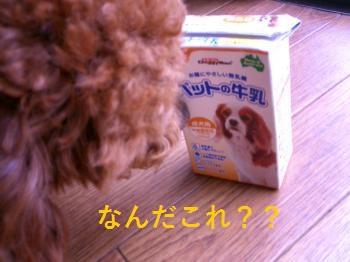 繝溘Ν繧ッ_convert_20140603100748