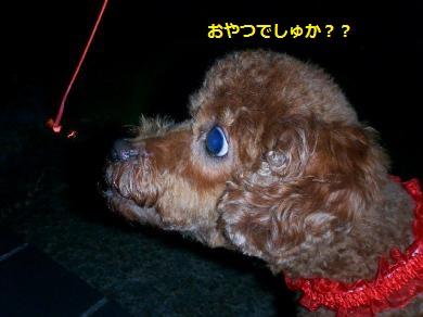 闃ア轣ォ・胆convert_20140805095254