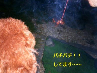 闃ア轣ォ・論convert_20140805095458