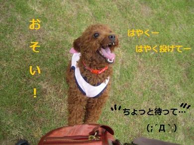 55_convert_20140914145048.jpg