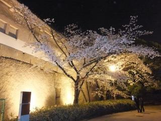 2014大阪城1