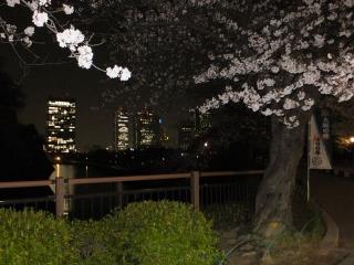 2014大阪城2