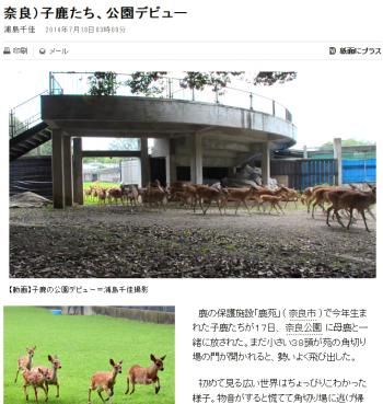 news奈良)子鹿たち、公園デビュー