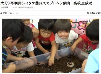 news大分)再利用シイタケ菌床でカブトムシ飼育 高校生成功