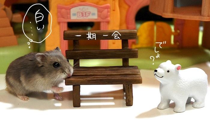 fc2ichigo.jpg