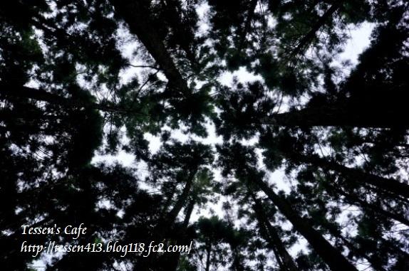 039山犬嶽 - コピー
