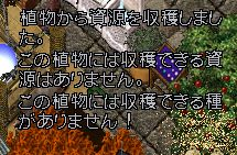 WS000564_2014030701255508c.jpg