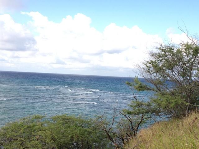 hawaii run2 (6)