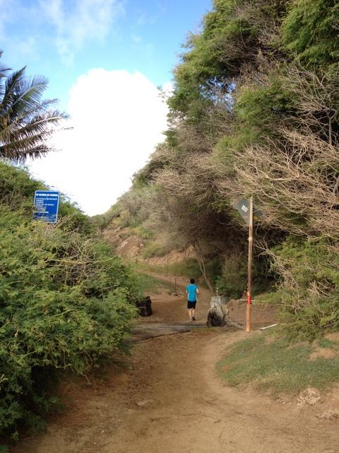 hawaii run2 (3)