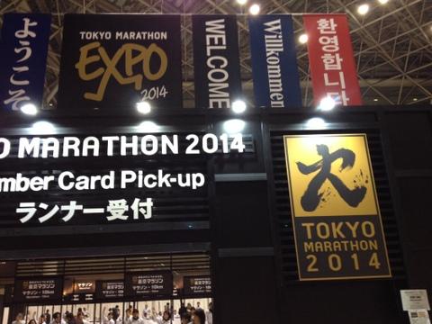 EXPO (7)