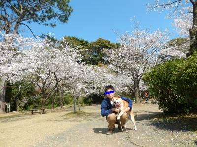 snap_tikagenoko414_2014360417.jpg