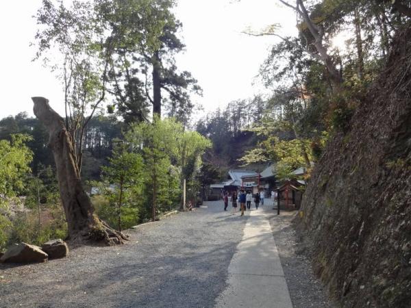 2014-04-13 栃木 069
