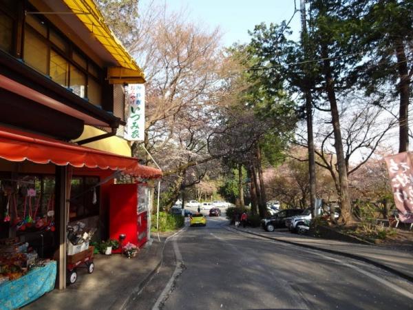 2014-04-13 栃木 074