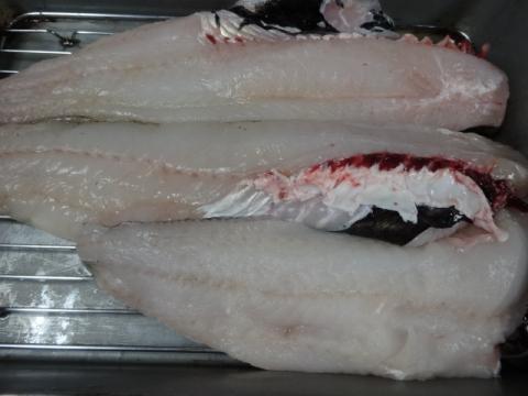 卒業祝い⑦ 捌いた魚